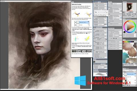 Zrzut ekranu Corel Painter na Windows 8.1