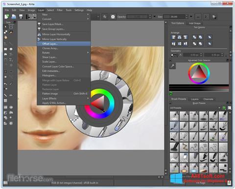 Zrzut ekranu Krita na Windows 8.1