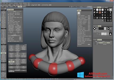 Zrzut ekranu 3D-Coat na Windows 8.1