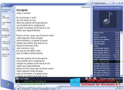 Zrzut ekranu Windows Media Player na Windows 8.1