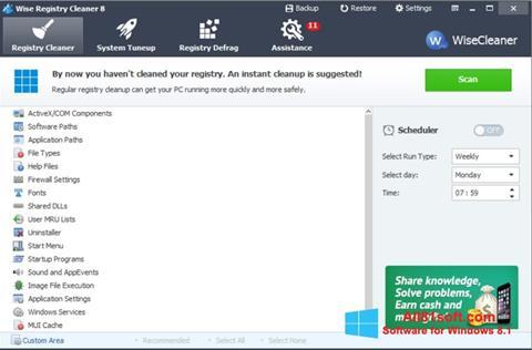 Zrzut ekranu Wise Registry Cleaner na Windows 8.1