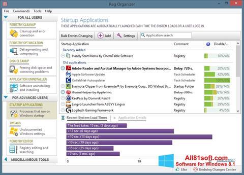Zrzut ekranu Reg Organizer na Windows 8.1