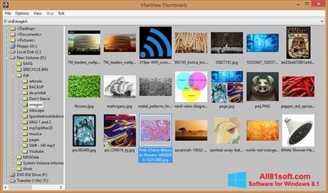 Zrzut ekranu IrfanView na Windows 8.1