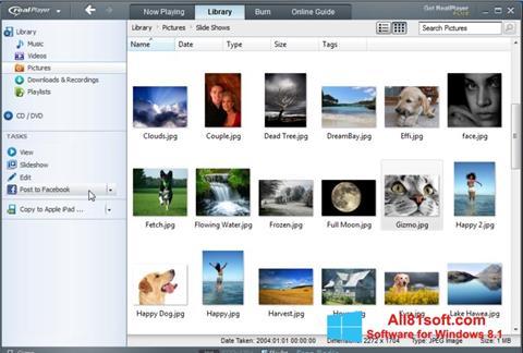 Zrzut ekranu RealPlayer na Windows 8.1